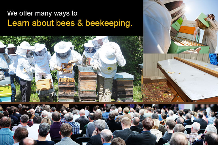 Stay Informed through the Columbia Gorge Beekeepers Association