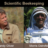 Randy Oliver and Morris Ostrofsky teach beekeeping class in Hood River, Oregon
