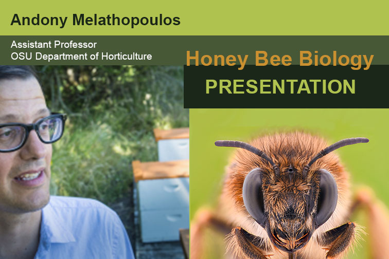 Andony Melathopoulos delivers presentation on Honey Comb