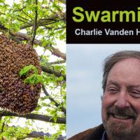 Charlie Vanden Heuvel talks about Understanding Swarms