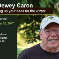 Dr. Dewey Caron discusses fat winter bees